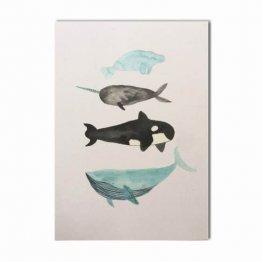 Postkarte mit Walen von Bär von Pappe
