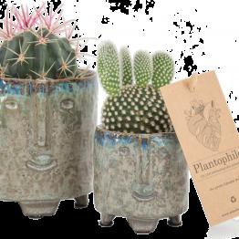 Plantophile Blumentopf grau grün