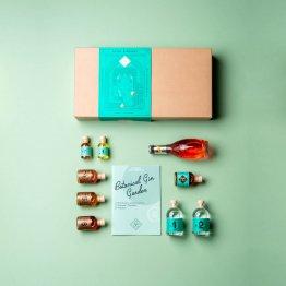 Gin Basil Wonderland - Cocktailbox mit Gin und Basilikum vom Drink Syndikat