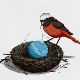 NEPTUN Vogel Illustration ROBERT RICHTER