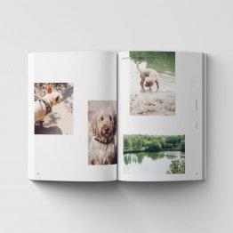 Walking Wild - unterwegs mit Hund in und um Berlin - die besten Tipps für Vierbeiner