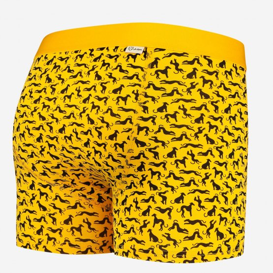 gelbe Retropants mit Windhundenbedruckt von A-dam Underwear aus Bio-Baumwolle und Econyl