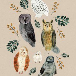 Postkarte mit Eulen von Bär von Pappe