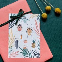 Postkarte mit Käfern von Bär von Pappe