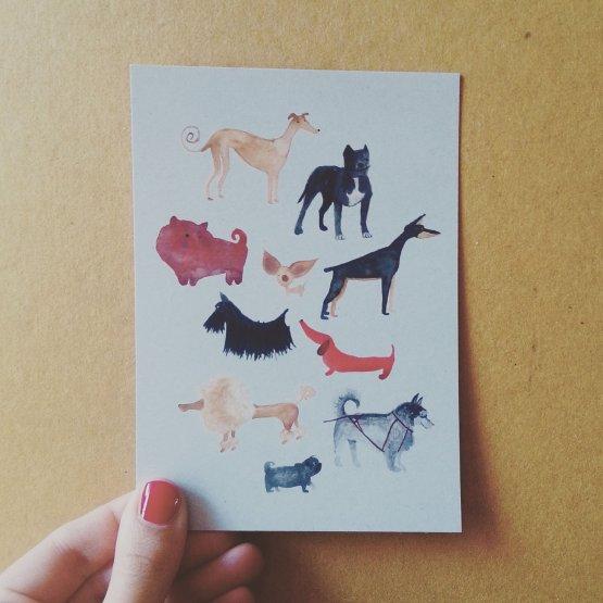 Postkarte mit verschiedenen lustigen Hunden von Bär von Pappe.