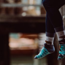 SPOX SOX Bär und Lachs mismatched Socken