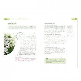 Meine Wildpflanzen Apotheke - 120 heilende Rezepte rund ums Jahr