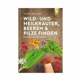 Wild- und Heilkräuter, Beeren und Pilze finden, bestimmen und verarbeiten - ein Blitzkurs für Einsteiger aus dem Ulmer Verlag